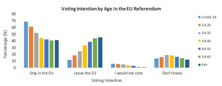 Alan Barney chart EU ref VI by age
